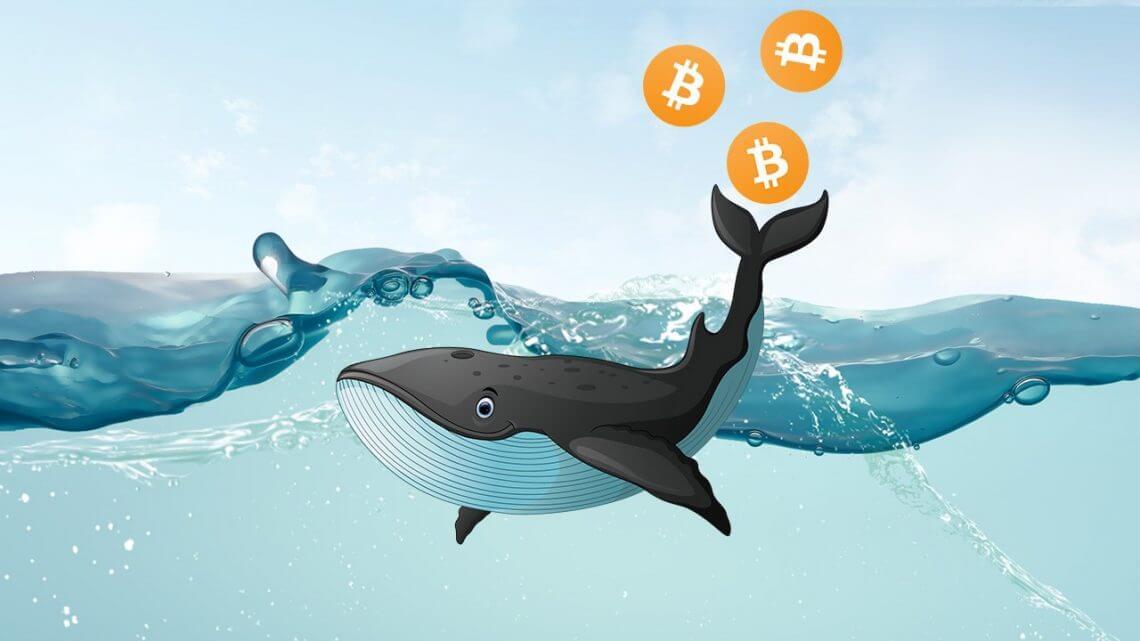 Milyarlarca Dolarlık Satışlar Bitcoin fiyatını çok fazla etkilemiyor