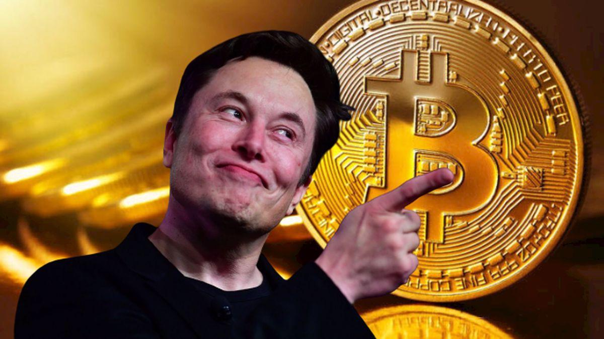 Elon Musk Açıklaması Sonrası Ciddi Miktarda Bireysel Yatırımcı Piyasaya Geliyor!