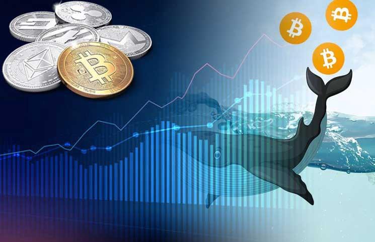 Dünyanın En Büyük Kripto Para Yatırımcıları Bakın Kim?