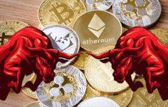 BNB, LINK ve ADA: Bu Altcoin'lerin Yatırım Modeli Neyi Gösteriyor?