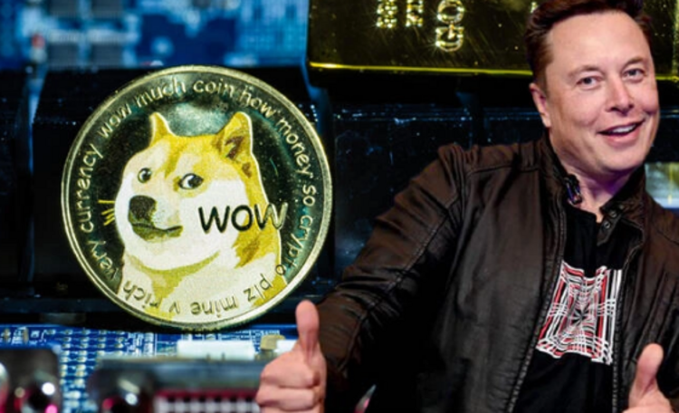 DOGE, Elon Musk'ın SNL Açıklamasıyla Yüzde 20 Arttı