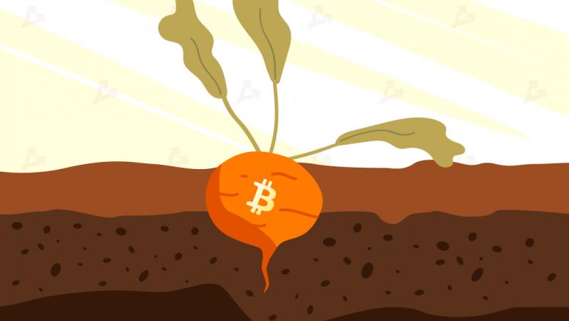 Bitcoin'de Taproot güncellemesi geliyor